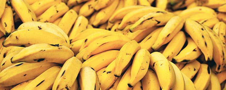Conservar fruta en contenedores reefer, una idea fresca